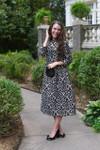 Vintage Taste of the Renaissance Dress