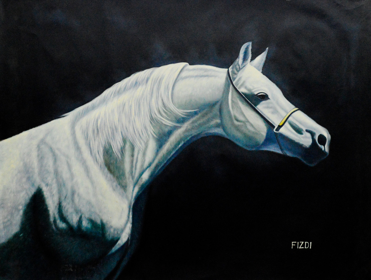 Buy White Horse Handmade Painting By Community Artists Group Code Fr 1523 23998 Paintings For Sale Online In India