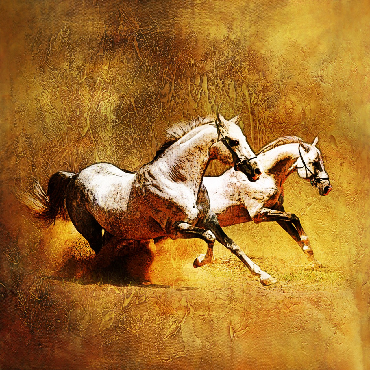 25horse02 24in X 24in 25horse02 2424 Yellow Horse Racing Jockey Horses Canvas Oil Colors Brown Rs 3190