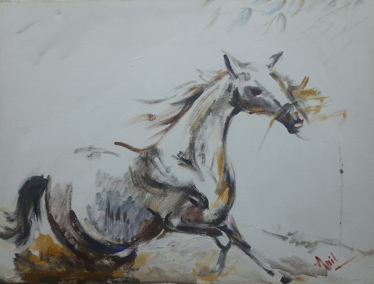 Buy White Horse Handmade Painting By Kalpana Bagul Code Art 5814 40779 Paintings For Sale Online In India