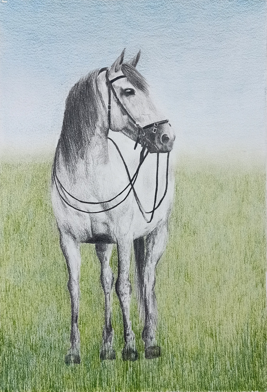 Buy A Royal Majestic Horse Handmade Painting By Deepthi Balantrapu Code Art 3306 45076 Paintings For Sale Online In India