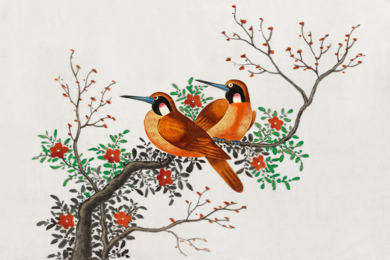 Shop Chinese Painting Featuring Two Birds On A Flowering Tree Branch 1800 1899 Prt 5388 Canvas Art Print 34in X 23in Canvas Art Print Online