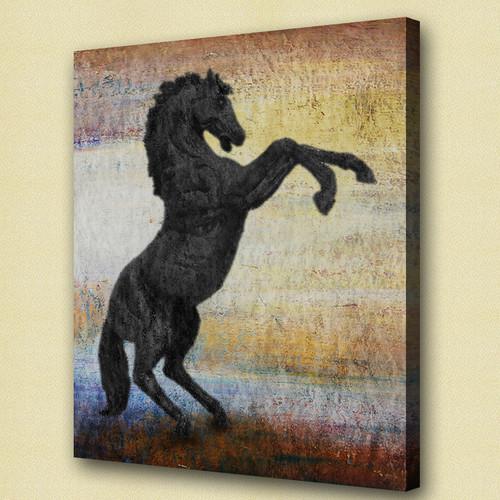 horse,black horse, galloping horse, jumping horse