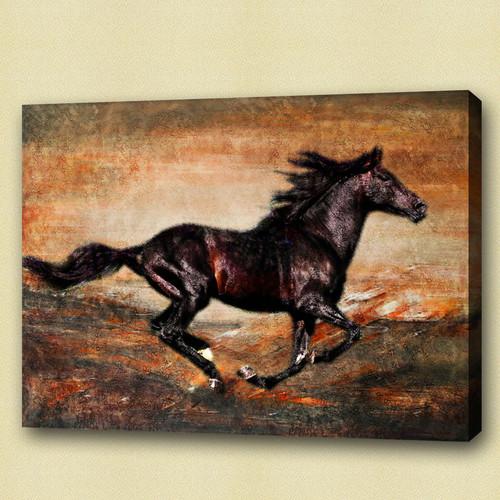 horse, black horse, galloping horse, galloping black horse , running horse