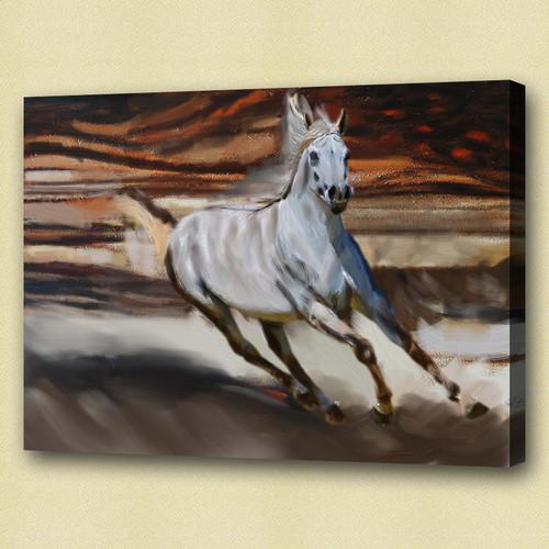 horse, white horse, galloping horse, galloping white horse , running horse