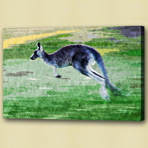 Kangaroo , polyphyletic grouping of species,Jumping animal,Wild Animal,Zoo animal