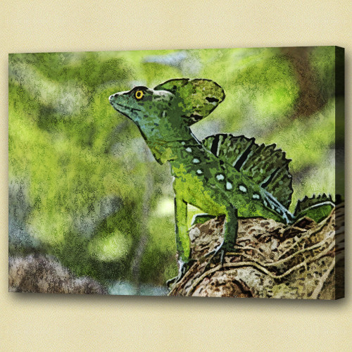 Chameleons or chamaeleons,lizardsquamate reptiles,Iguana