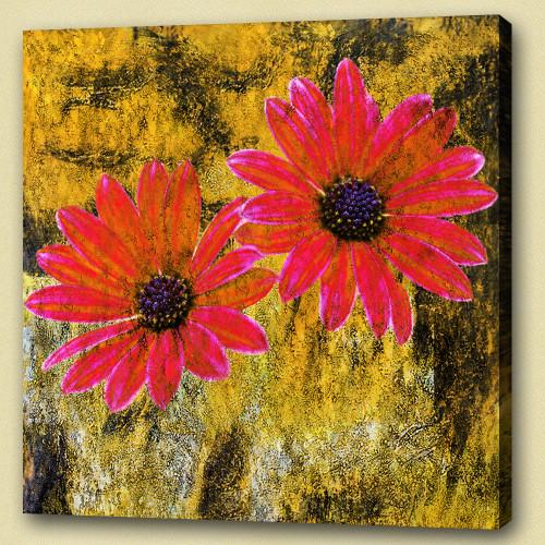Flower,Floral,Red Flowers,This Bloom, flowering plants