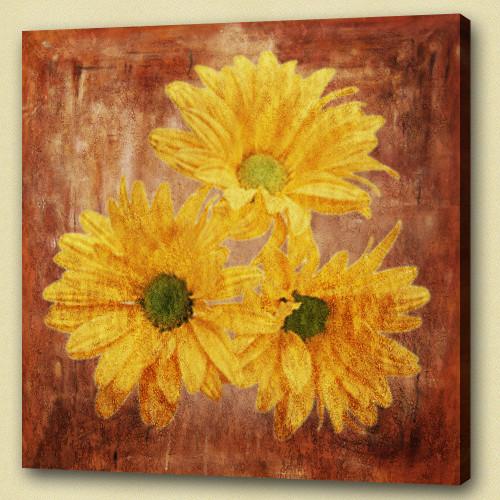 Flower,Flowers, flowering plants