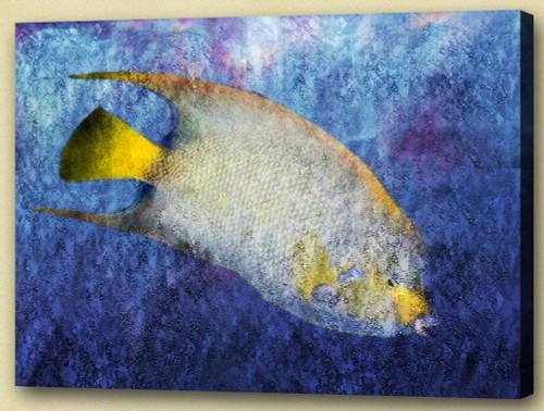 Fish,Aqua Life, Aquatic Craniate,water animal, aquaculture
