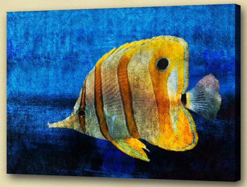 Aqua Life, Aquatic Craniate,water animal, aquaculture,