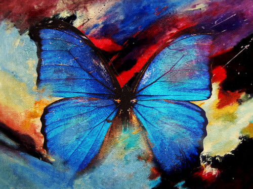 Butterfly,insects,Winged Insetc,Beautiful