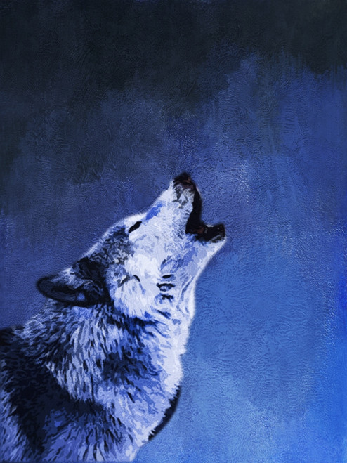 Alpha Wolf,Wild life, animal