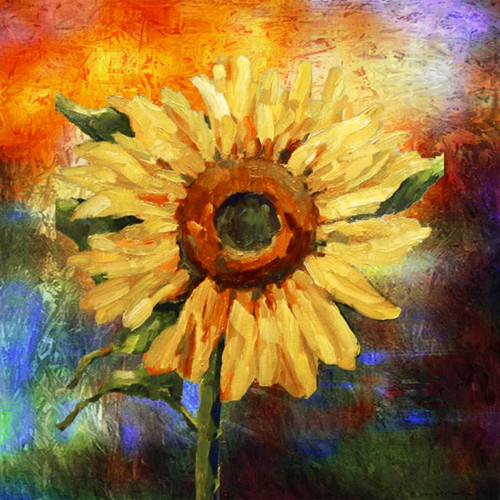 Flower,Floral,Colorful Flowers,Sunflowers