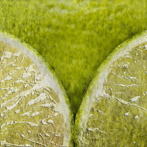 Lime,Lemon,Source of vitamine c