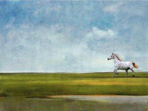Abstract,Landscape,Pattern,Design,Art,Lines,Forms,Horse