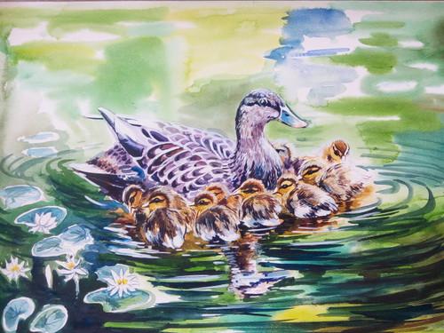 duck, ducklings, birds, birds in water,Happy family,ART_788_10957,Artist : Achintya Hazra,Water Colors