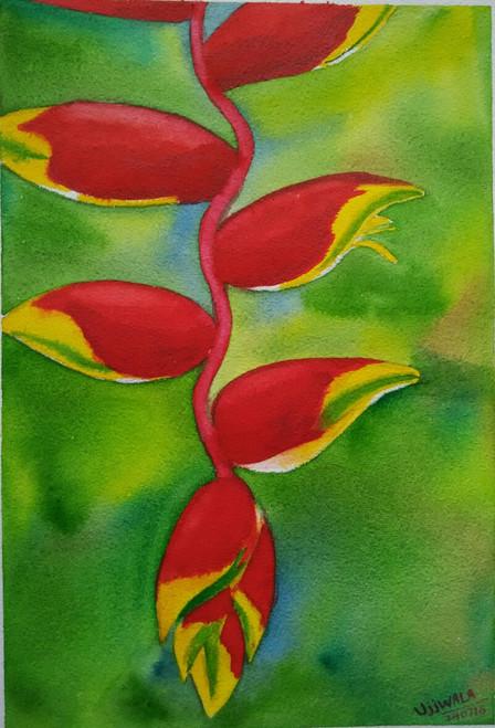 ,Heliconia flower,ART_1243_11320,Artist : Ujwala Chavan,Water Colors