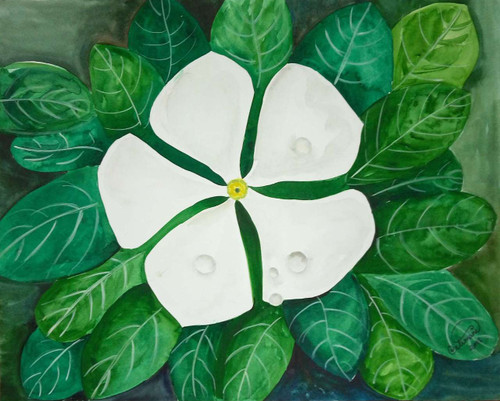 White flowers with water drops on it, and green leaves back ground,White flower with water drops ,ART_1403_11778,Artist : AARATHI MANIKANDAN,Water Colors