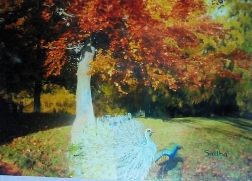 Peacock,Nature,Tree,Beauty of nature with peacocks,ART_1454_12071,Artist : Sudha  Sharma,Oil