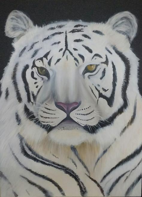 tiger,white tiger,animal,forest,The White Tiger,ART_889_11728,Artist : Harpreet Kaur,Acrylic