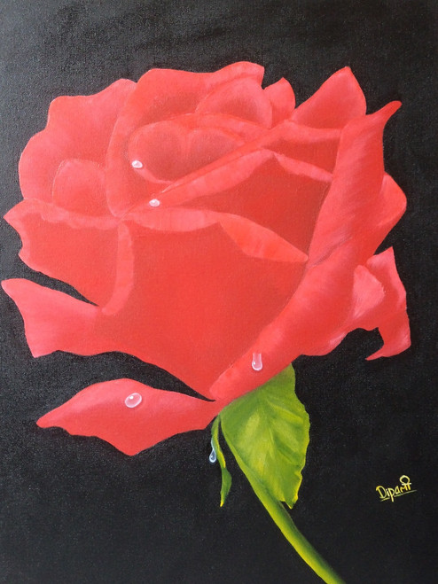 Red Rose, floral, flora, oil painting, canvas, wallart, nature, red, black, dipali deshpande, fizdi,Red Rose size:,ART_259_6408,Artist : Dipali Deshpande,Oil