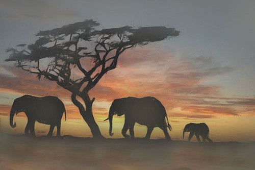 elephant paintings,56Anm07,MTO_1550_15079,Artist : Community Artists Group,Mixed Media