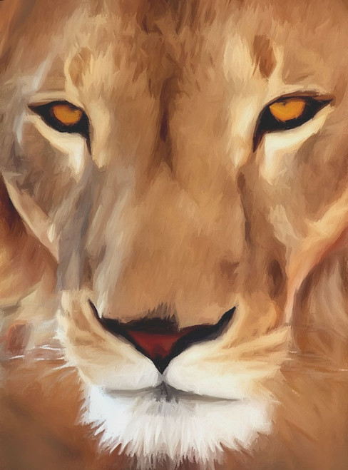 Lion paintings,56Anm30,MTO_1550_15097,Artist : Community Artists Group,Mixed Media
