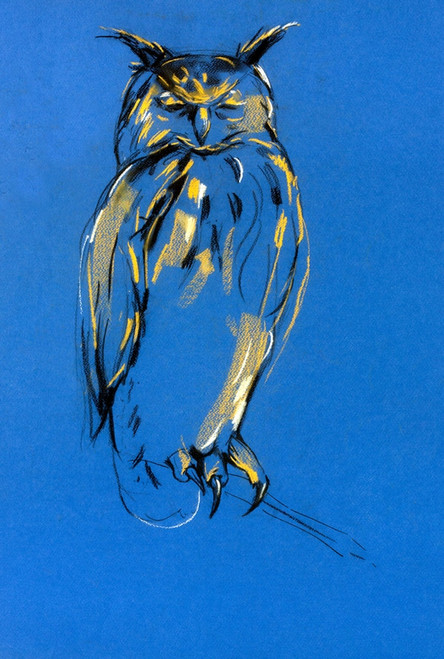 owl paintings,56Anm120,MTO_1550_15215,Artist : Community Artists Group,Mixed Media