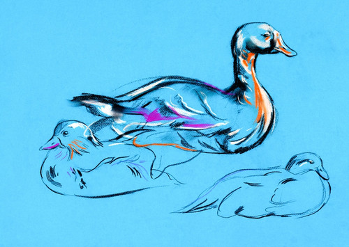 duck paintings,56Anm118,MTO_1550_15213,Artist : Community Artists Group,Mixed Media