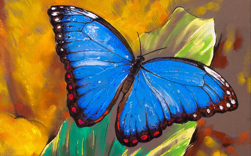 beautiful butterfly paintings,56Anm115,MTO_1550_15211,Artist : Community Artists Group,Mixed Media