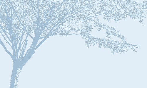 tree paintings,56Dec13,MTO_1550_15275,Artist : Community Artists Group,Mixed Media