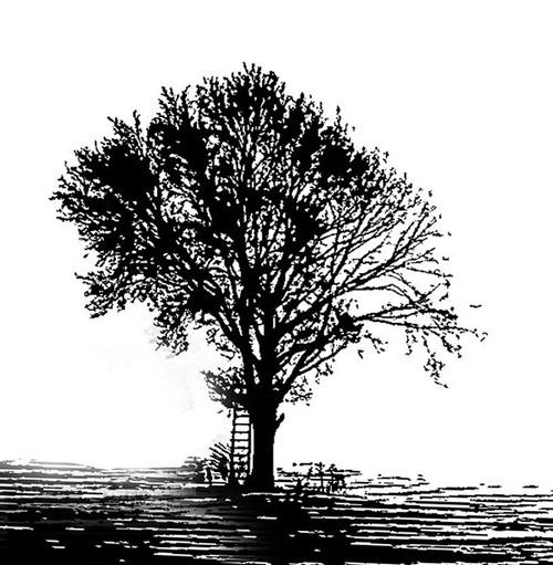 tree paintings,56Dec08,MTO_1550_15270,Artist : Community Artists Group,Mixed Media