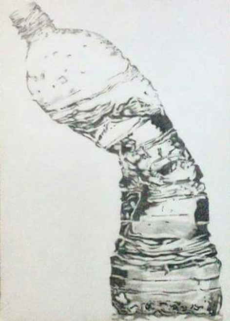 Bottle, crushed, pencil, paper, A3, black and White,Bottle,ART_1898_15649,Artist : Ravish Choudhary,Pencil