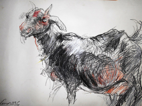 goat drawing  study animal pastel ,Goat,ART_530_17758,Artist : Kishore Ghosh,Pastels