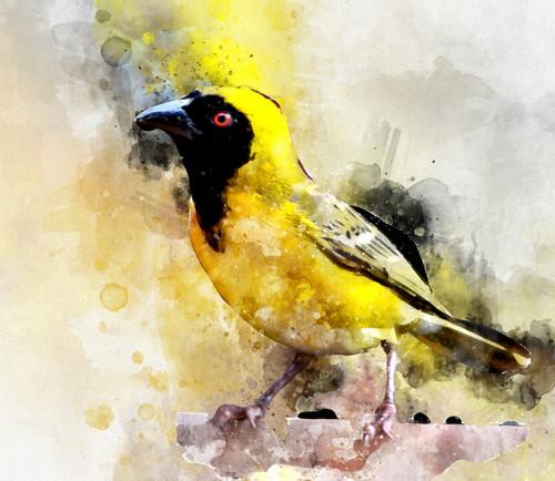 Yellow, sparrow,The yellow bird,MTO_1550_17781,Artist : Community Artists Group,Mixed Media