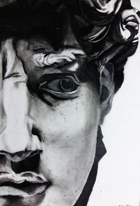 half face,The look,ART_2275_17811,Artist : Raja Joanna,Charcoal
