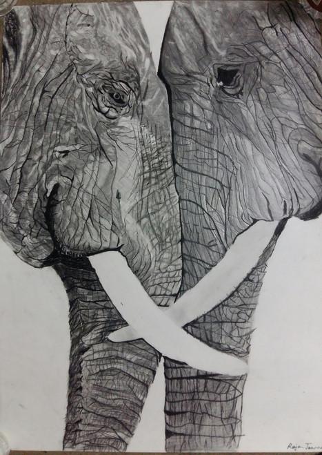 Elephant love,Love,ART_2275_17877,Artist : Raja Joanna,Graphite