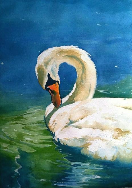 swan bird,Swan,ART_558_19478,Artist : BHAVIN MEHTA,Water Colors