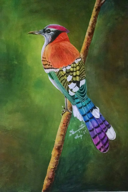 bird, orange, branch,Where Did Everyone Go,ART_2393_20619,Artist : Sampeeta Banerjee,Water Colors