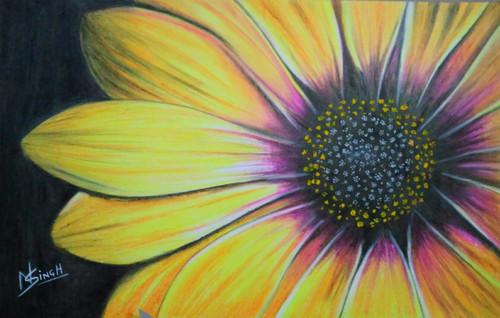 Sunflower painting,Sunflower,ART_2819_20717,Artist : Nagendra Singh,Pastels