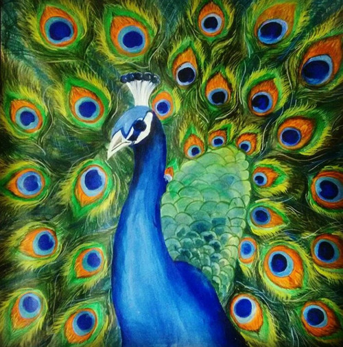 peacock, acrylic, paper, under5000, nature, wildlife, birds,Peacock,ART_3052_20777,Artist : Neha Gupta,Acrylic