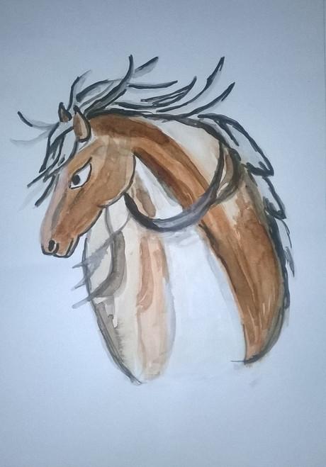 Horse Face,Horse Face,ART_3114_21371,Artist : Debasree Chatterjee,Water Colors