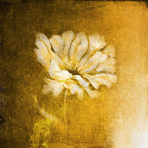 Goldie2 - 32in X 32in,31Gold20_3232,Yellow, Brown,80X80 Size,Gold and Silver Art Canvas Painting