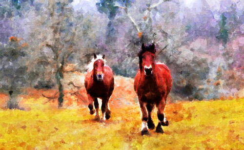 Horses Runing (PRT_400) - Canvas Art Print - 33in X 21in