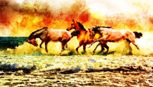 3 Running Horses (PRT_541) - Canvas Art Print - 37in X 21in