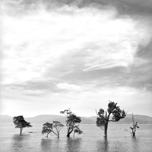 Andaman 8834 By Medhi Photography (PRT_565) - Canvas Art Print - 21in X 21in