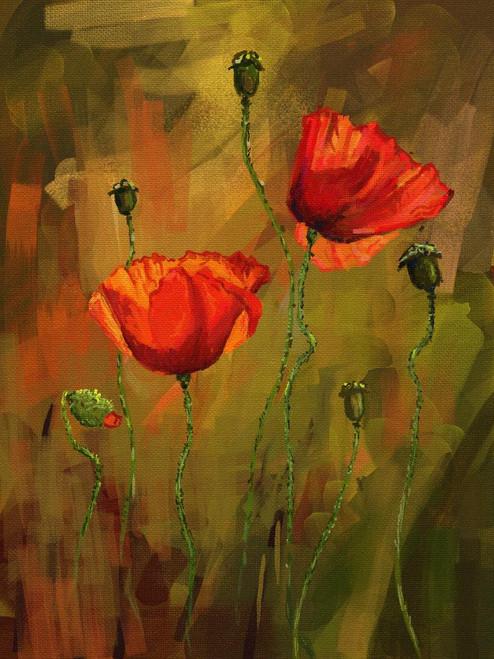 Poppy (PRT_995) - Canvas Art Print - 18in X 24in