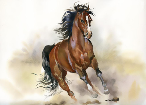 Brown Running Horse In Watercolors (PRT_1069) - Canvas Art Print - 27in X 19in