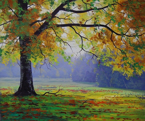 Nature,Beauty of Tree,Tree,Garden,Peace of Mind,Natures Beauty